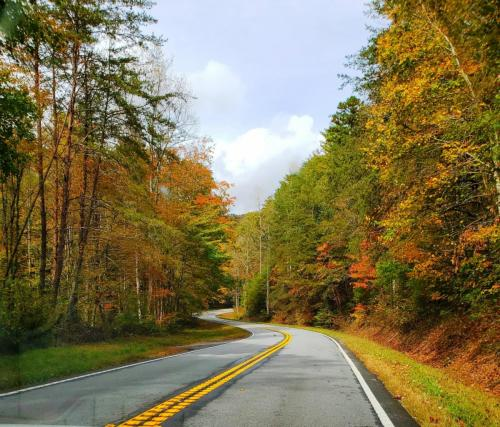 Helen_ GA mountain road view II 10-24-20